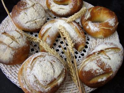 Petits pains à l'épeautre - 12.2