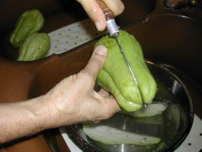 Ingrédients pour la recette : Chayottes gratinées à la réunionnaise