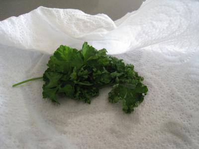 Sauce sainte-Ménéhould à la tomate - 1.3