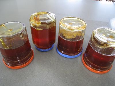 Gelée ou cramaillote de fleurs de pissenlits - 7.3