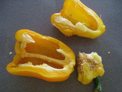 Sauté d'asperges aux oignons et poivron - 2.3