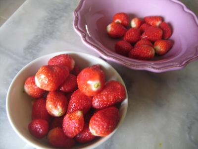 Mousse aux graines de tournesol et son coulis de fraises - 2.1