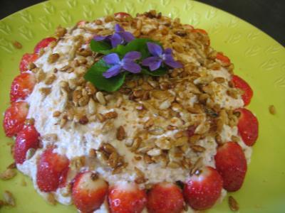 Mousse aux graines de tournesol et son coulis de fraises - 14.2