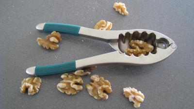 Image : Casse-noix et casse-noisettes