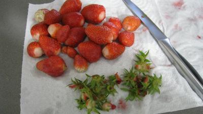 Boisson fraises et bananes à la mexicaine - 1.3