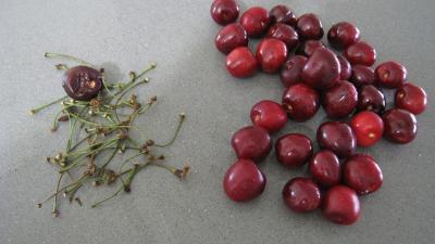 Blanquette aux pommes et aux fruits - 1.2