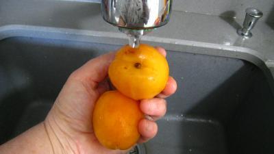 Coulis d'abricots - 1.1