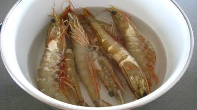Sauce pâtissière aux crevettes - 1.2
