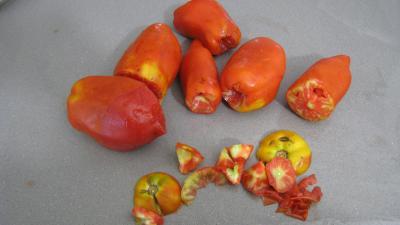 Sauce tomates façon bolognaise - 1.4