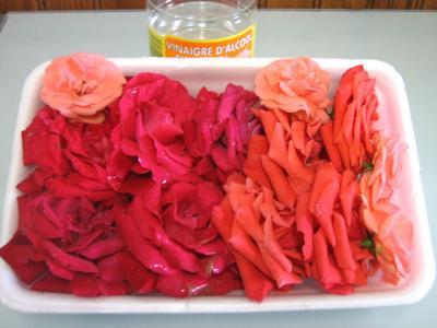 Ingrédients pour la recette : Vinaigre de roses