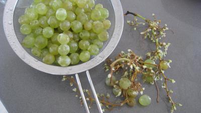 Confiture de figues et raisins - 2.1
