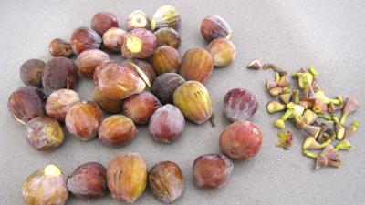 Figues aux carambars - 1.2