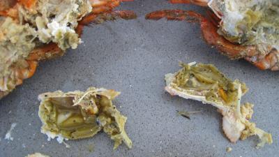 Verrines de homard en salade - 5.1