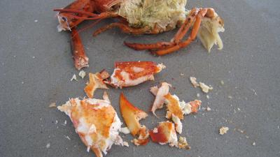 Verrines de homard en salade - 6.2
