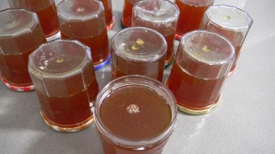 Gelée d'oranges amères - 7.4