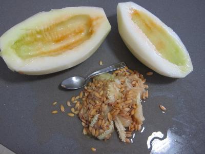 Macédoine de melon et pastèque au Porto - 2.1