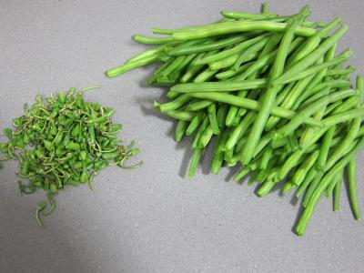 Haricots verts à la portugaise - 1.1