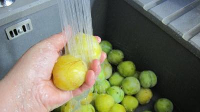Confiture de prunes blanches - 1.1