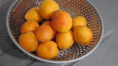 Croustade aux abricots - 4.4