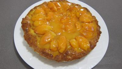 Croustade aux abricots - 9.4