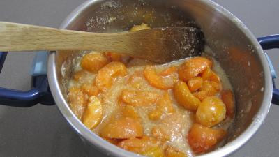 Confiture d'abricots au parfum de noix de coco - 3.2