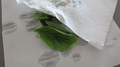 Crostinis d'aubergines et son concassé de boeuf façon Italienne - 2.1